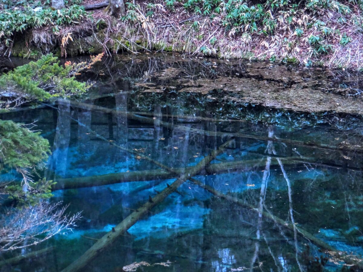 「青い池」に関する記事一覧